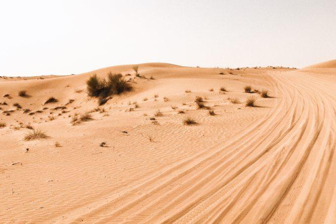 landscape-photography-of-desert-1455952.jpg